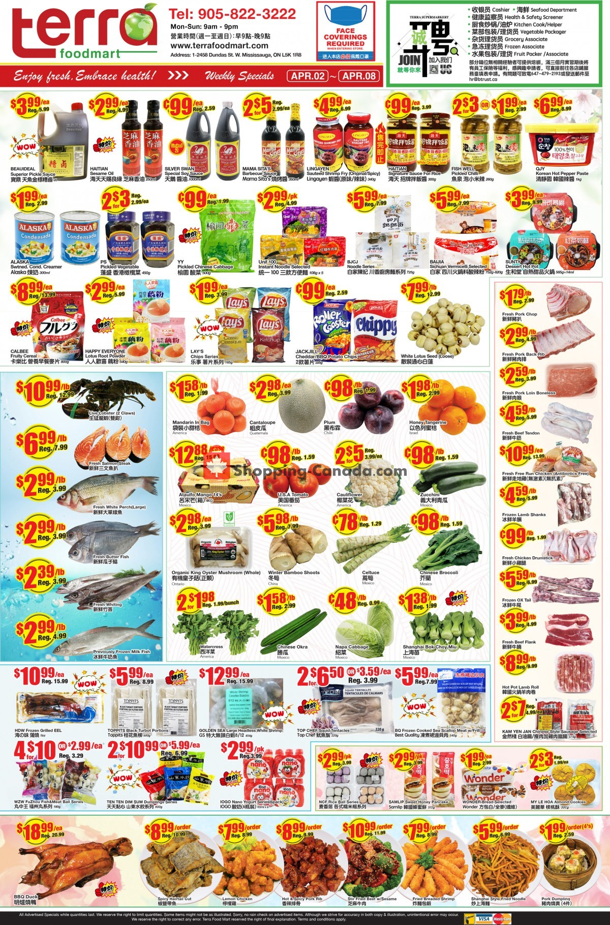 Flyer Terra Foodmart Canada - from Friday April 2, 2021 to Thursday April 8, 2021