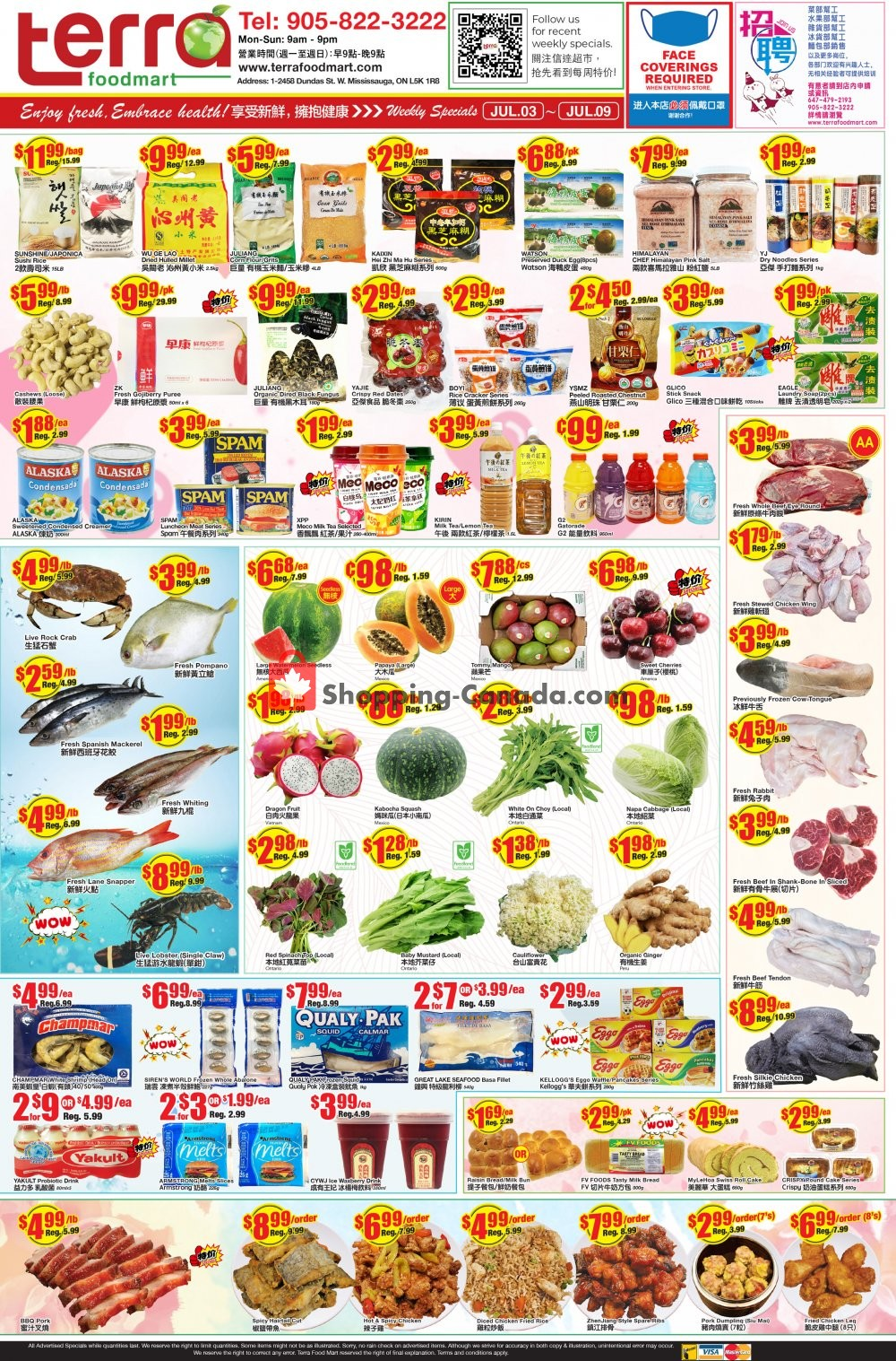 Flyer Terra Foodmart Canada - from Friday July 3, 2020 to Thursday July 9, 2020