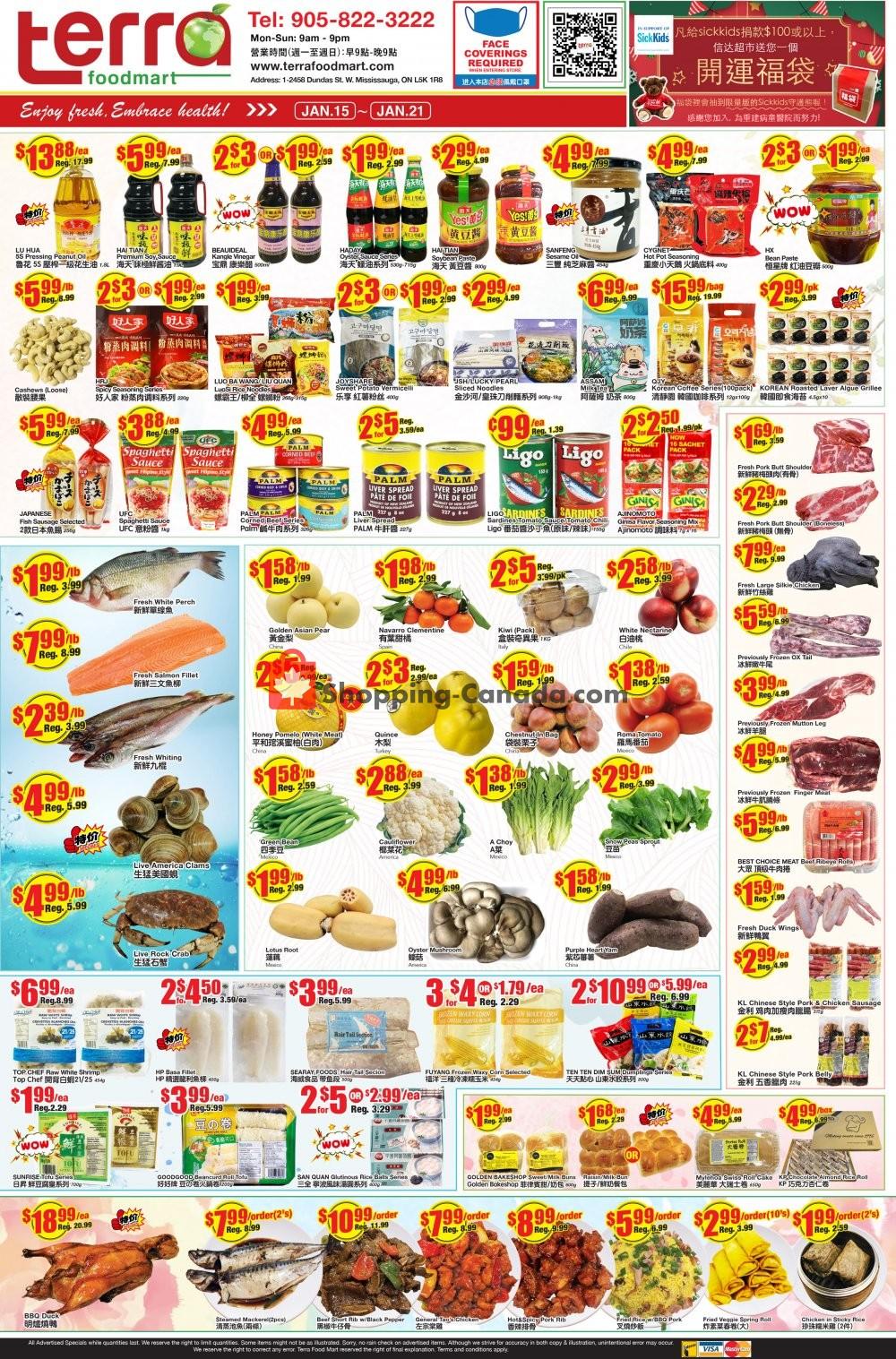 Flyer Terra Foodmart Canada - from Friday January 15, 2021 to Thursday January 21, 2021
