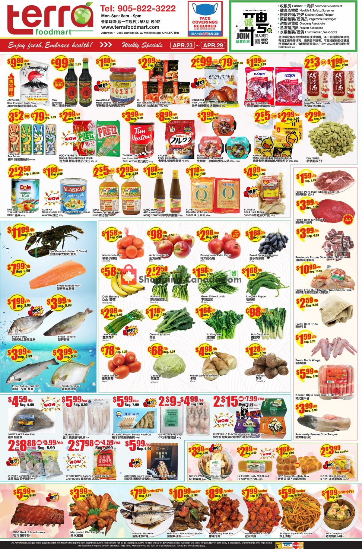 Flyer Terra Foodmart Canada - from Friday April 23, 2021 to Thursday April 29, 2021