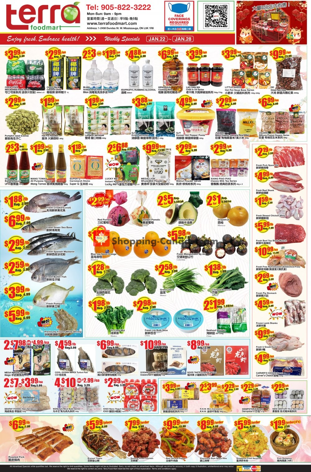Flyer Terra Foodmart Canada - from Friday January 22, 2021 to Thursday January 28, 2021