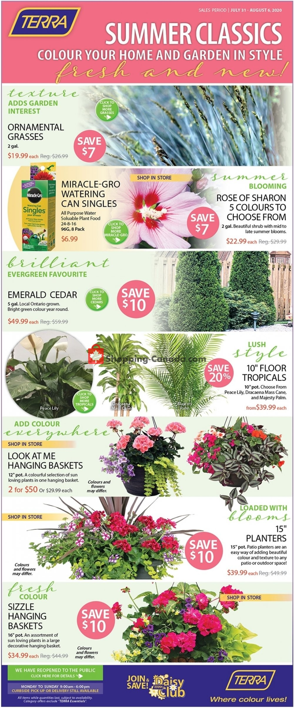 Flyer Terra Green Houses Canada - from Friday July 31, 2020 to Thursday August 6, 2020