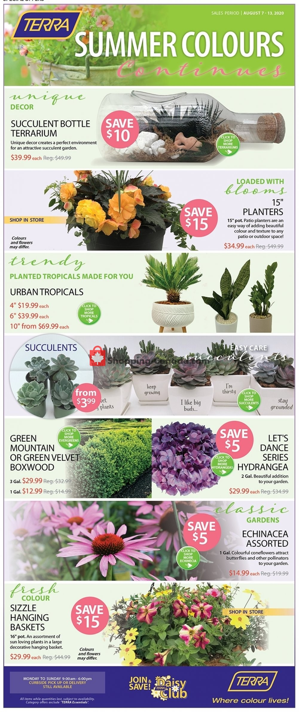 Flyer Terra Green Houses Canada - from Friday August 7, 2020 to Thursday August 13, 2020