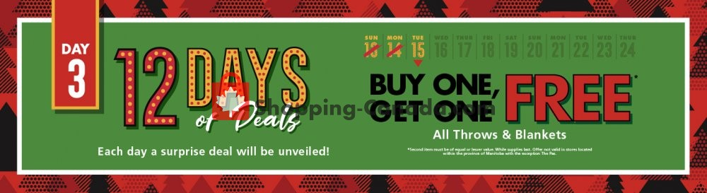 Flyer The Bargain! Shop Canada - from Tuesday December 15, 2020 to Tuesday December 15, 2020