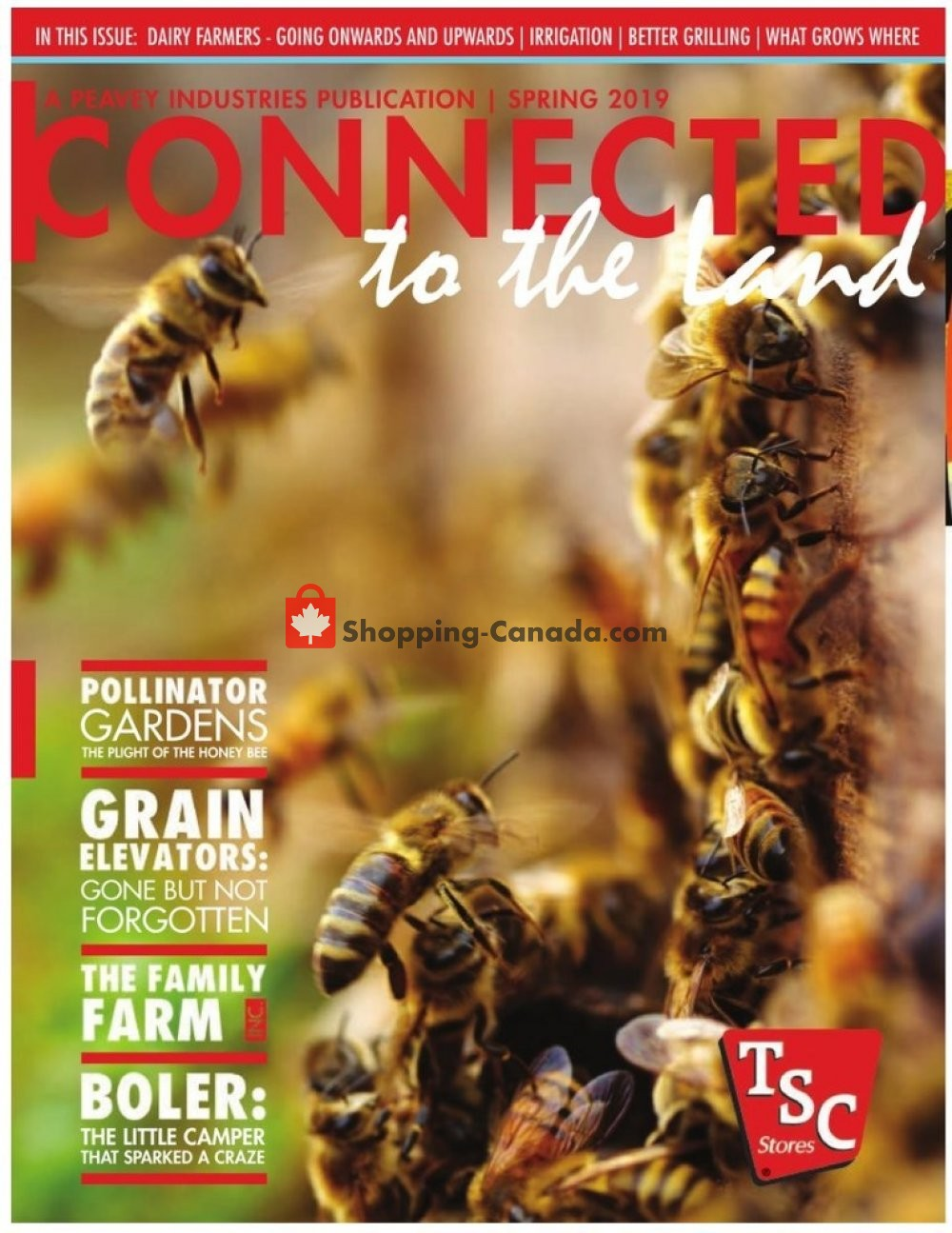 Flyer and weekly ads: TSC Stores Canada - (Connected to the