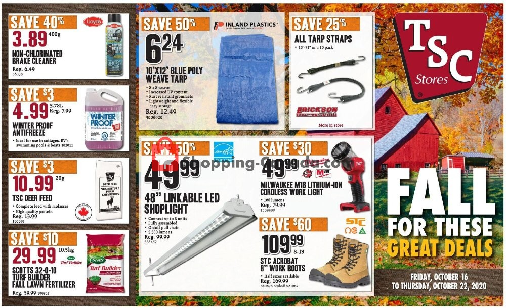Flyer TSC Stores Canada - from Friday October 16, 2020 to Thursday October 22, 2020
